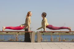 Yoga in the park - meditation and breathing exercises with an experienced trainer, Portrait stock image