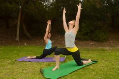Yoga at the Park. Women are engaged in outdoor yoga Stock Images