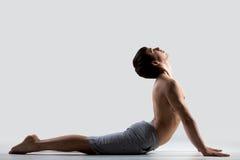 Yoga pose bhudjangasana Stock Image