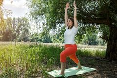Yoga pose body balance and geist exercises. In nature royalty free stock images