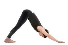 Yoga pose downward-facing dog Royalty Free Stock Photography