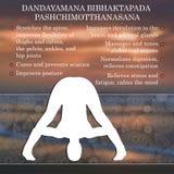 Yoga pose infographics, benefits of practice. Dandayamana Stock Photography