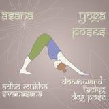 yoga Pose orientée vers le bas de chien Photographie stock libre de droits