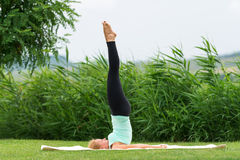 Yoga Pose Suppor ted Shoulderstand Royalty Free Stock Photo