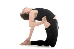 Yoga pose ushtrasana variation Royalty Free Stock Image