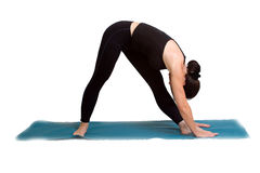Yoga poses and exercise. Attractive woman doing yoga exercise Royalty Free Stock Images