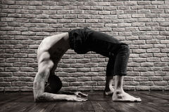 Yoga poses Royalty Free Stock Images