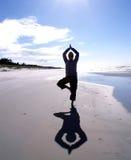 Yoga in positie - boom Stock Afbeeldingen