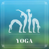 Yoga poster with silhouettes of women in the yoga poses on a photo blurred background Stock Images