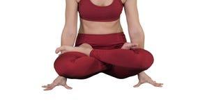 Yoga practicante de la mujer atractiva deportiva, coloc?ndose en ejercicio de la escala, actitud del tolasana en el fondo blanco almacen de metraje de vídeo