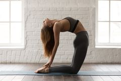 Yoga practicante de la mujer joven, colocándose en la actitud de Ustrasana, ejercicio del camello foto de archivo