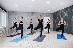 Yoga Practice Exercise Class Concept. Indoors at yoga studio stock image