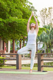 Yoga practicing in the park. A girl practicing yoga in the park Stock Photos