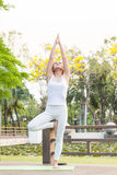 Yoga practicing in the park. A girl practicing yoga in the park Royalty Free Stock Images