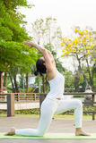 Yoga practicing in the park. A girl practicing yoga in the park Stock Image