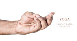 Yoga pran mudra Royalty Free Stock Images