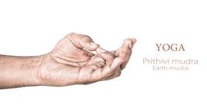 Yoga Prithivi mudra stockbilder
