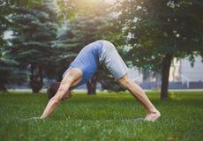 Yoga que estira vector Hombre en actitud del perro al aire libre Imágenes de archivo libres de regalías