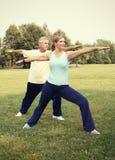 Yoga senior delle coppie Immagine Stock