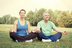 Yoga senior delle coppie Immagini Stock