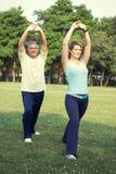 Yoga senior delle coppie Fotografia Stock Libera da Diritti
