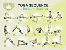 YOGA Sequence - Immune Booster. A set of complex visual sequence exercise of yoga for better immune booster Stock Images