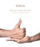 Yoga shiva linga mudra stockbilder