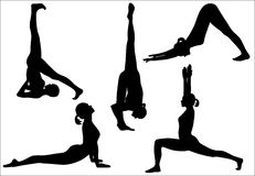 Yoga silhouette. Five yoga positions: shoulder stand, standing split, downward dog, crescent pose and cobra Stock Photography