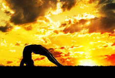 Yoga silhouette at sunset. Yoga Dwi Pada Viparita Dandasana Upward Facing Two-Foot Staff Pose inverse pose by Man in silhouette with orange sunset sky background Stock Image