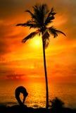 Yoga silhouette tiriang mukhottanasana pose Royalty Free Stock Images