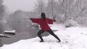 Yoga in the Snow stock footage