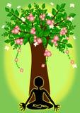 Yoga sotto l'albero Fotografia Stock Libera da Diritti