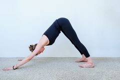 Yoga students showing different yoga poses.  Royalty Free Stock Photo