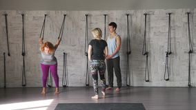 Yoga studio: two women and a man practice yoga and do gymnastics. stock footage