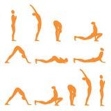 Yoga sun salutation. Set of sun salutation yoga exercises, vector illustration Stock Image