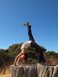 Yoga Superstar  lady does a backbend on tree stump Royalty Free Stock Image
