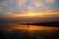 Yoga sur la plage sur le coucher du soleil Photo libre de droits