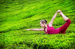 Yoga on tea plantations Royalty Free Stock Photos