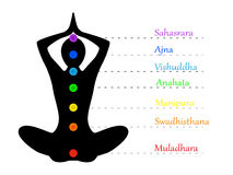 Yoga teacher and chakras Royalty Free Stock Photography