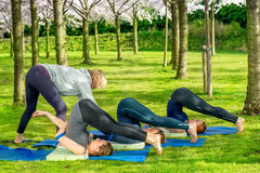 Yoga teacher helping students with halasana Royalty Free Stock Images