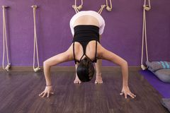 Yoga teacher practicing Adho Mukha Svanasana on stretching ropes. Female yogi in downward facing dog pose on purple studio. Calisthenics, mat, blanket, bolster royalty free stock photography