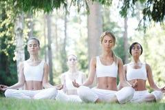 Yoga training at park Royalty Free Stock Photography