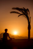 Yoga training in tropical location Stock Photos