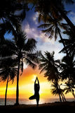 Yoga tree pose around palm trees. Yoga tree pose silhouette by man at palm trees, ocean and sunset sky background in India Royalty Free Stock Photo