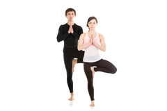Yoga tree pose with partner Royalty Free Stock Photos