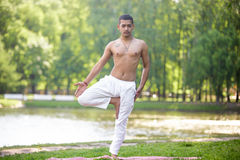 Yoga tree pose. Serene attractive Indian young man in white linen clothes working out on lake in park, standing in Vrikshasana (Vriksasana, Tree Pose), full Royalty Free Stock Images