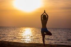 Yoga tree pose Royalty Free Stock Images