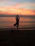 Yoga Tree Pose in Sunset. A yoga tree pose conducted on a beach in the sunset. Great for flyers, marketing banners, to promote zen royalty free stock photo