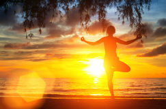 Yoga tree pose by woman silhouette with sunset. Sky background Royalty Free Stock Images