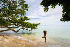Yoga on tropical thai beach. Tropical summer yoga session on beautiful sunrise beach, Koh Kradan island in Thailand. Vriksha asana - tree pose Stock Photography